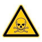 Giftige Pflanzen, Reinigungsmittel, Absturzgefahr von Balkonen, Mülleimer, Stromkabel ... Es gibt reichlich Gefahrenquellen im Haushalt, die es zu entschärfen gilt.