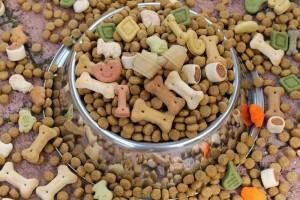 Vorteile und Nachteile Trockenfutter