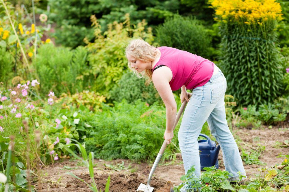 Meinen Australian Shepherd im eigenen Garten vergraben. Worauf muss ich achten?